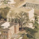 Aerial closeup of bur oak between Stevenson and Sheean Library, ca1968, from the West