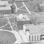 Aerial closeup of bur oak between Stevenson and Sheean Library, ca. 1974, from the East