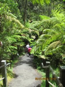 Path down to the Thurston Lava Tube