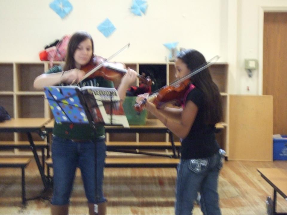Violins 2013
